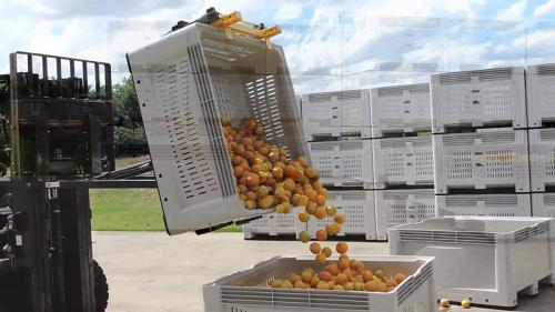 Contenitore ribaltabile ribaltabile arancione